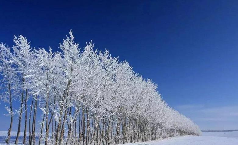 呼伦贝尔冬季旅游有什么好玩的?