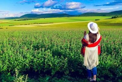 6月底呼伦贝尔大草原旅游穿衣指南